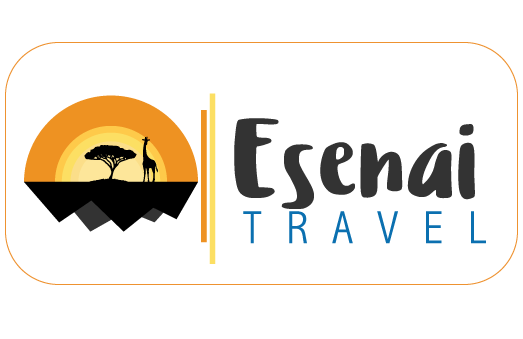 esenai-logo-by-kanatech-systems